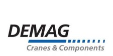 demag motors logo